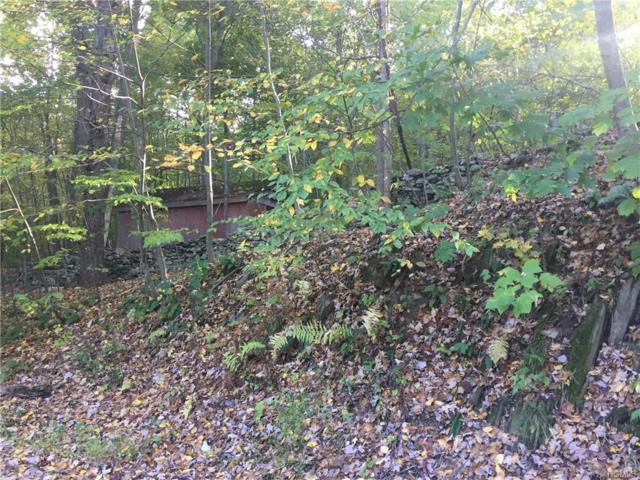 18 Cross Creek Run, Highland, NY 12528 (MLS #4848423) :: Mark Seiden Real Estate Team