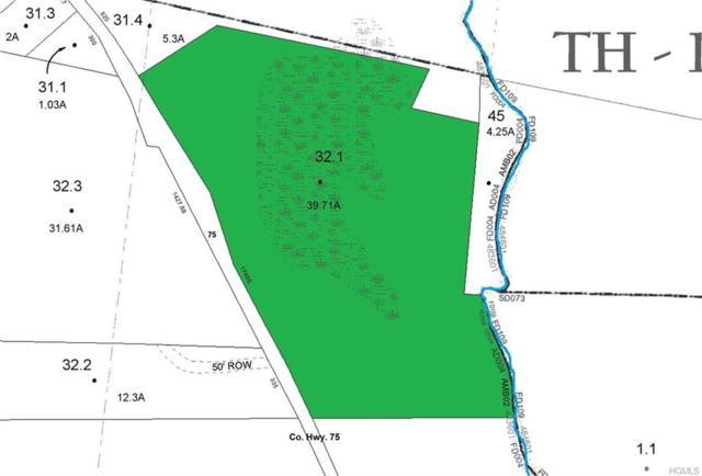 Co Hwy 75, Bethel, NY 12720 (MLS #4848472) :: Mark Boyland Real Estate Team