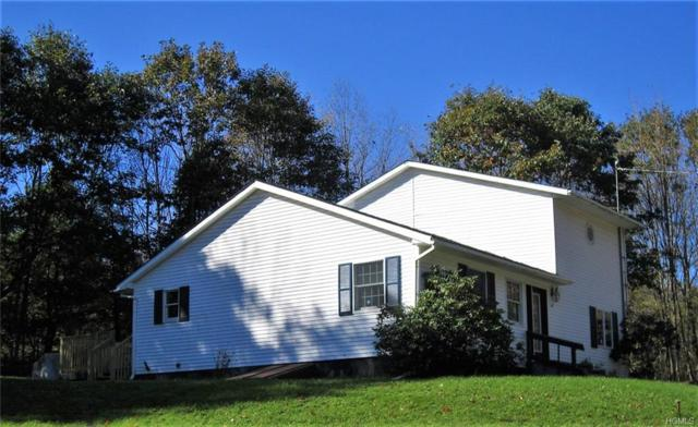 11 Saddle Lane, Monticello, NY 12701 (MLS #4848600) :: Mark Boyland Real Estate Team