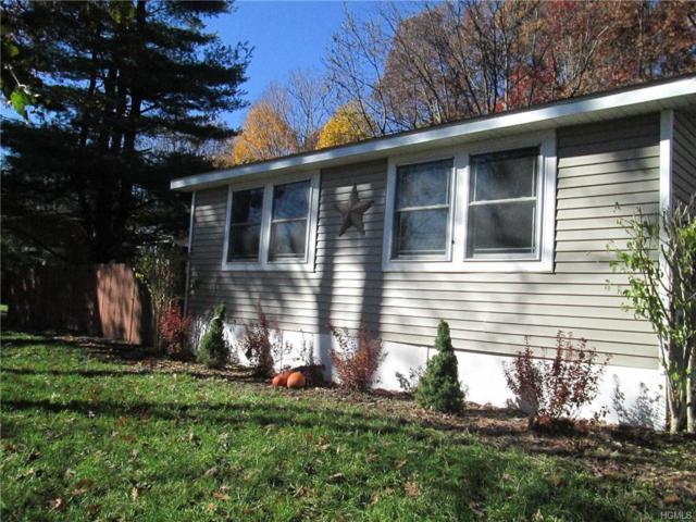 274 Reservoir Road, Goshen, NY 10924 (MLS #4848621) :: Mark Seiden Real Estate Team