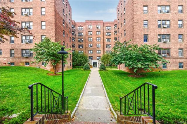 485 E Lincoln Avenue #209, Mount Vernon, NY 10552 (MLS #4848646) :: Mark Boyland Real Estate Team