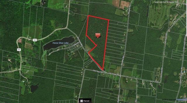 600 Mount Hope, Bethel, NY 12783 (MLS #4848661) :: Mark Boyland Real Estate Team