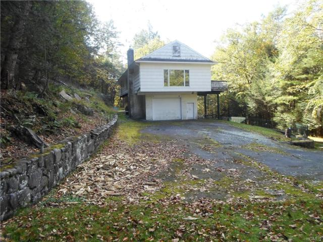 440 State Route 55, Eldred, NY 12732 (MLS #4848664) :: William Raveis Legends Realty Group
