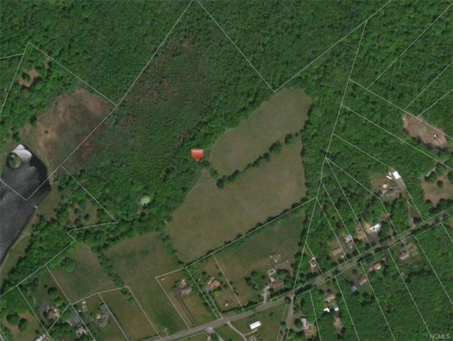 New Prospect Road, Pine Bush, NY 12566 (MLS #4848682) :: Mark Boyland Real Estate Team