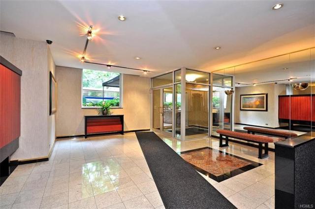 6200 Riverdale Avenue 3B, Bronx, NY 10471 (MLS #4848838) :: Mark Boyland Real Estate Team