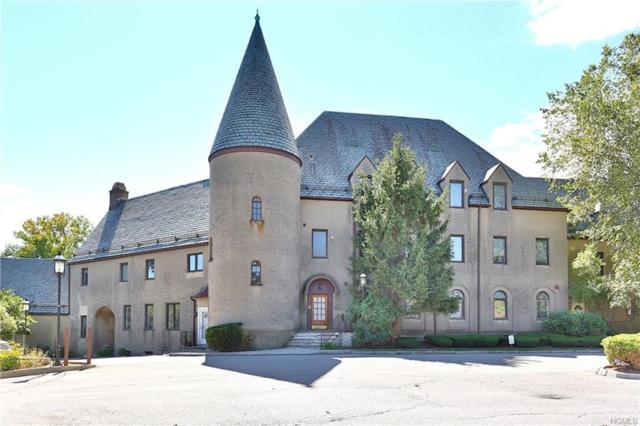 100 Chateau Lane #12, Hawthorne, NY 10532 (MLS #4848854) :: Mark Seiden Real Estate Team
