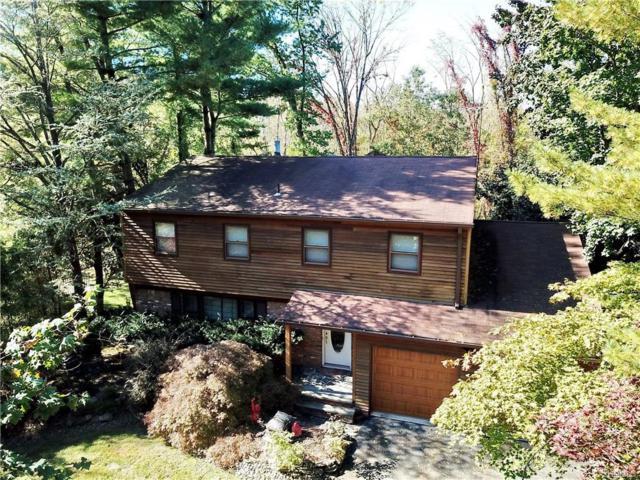 614 S Mountain Road, New City, NY 10956 (MLS #4848871) :: William Raveis Baer & McIntosh