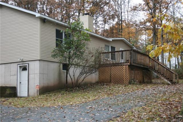 89 Country Road, Callicoon, NY 12723 (MLS #4848884) :: Mark Seiden Real Estate Team