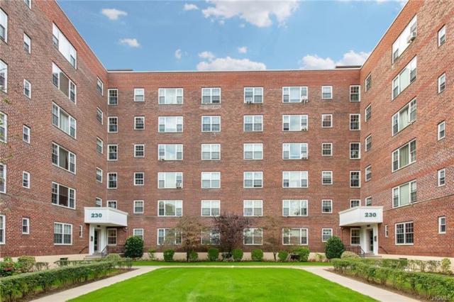 230 Pelham Road 3H, New Rochelle, NY 10805 (MLS #4848928) :: William Raveis Baer & McIntosh