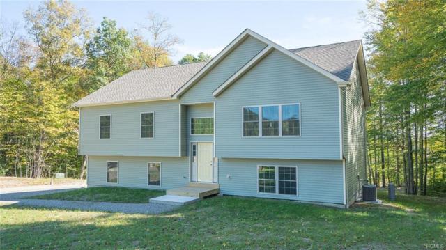 14 Roe Drive, Wurtsboro, NY 12790 (MLS #4849018) :: Mark Boyland Real Estate Team