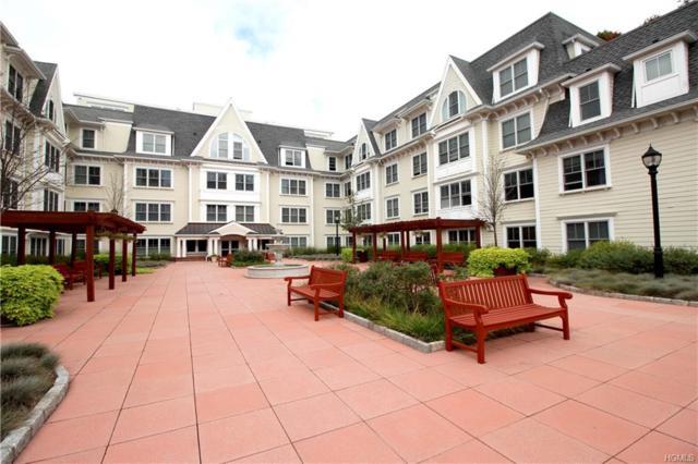225 Stanley Avenue #220, Mamaroneck, NY 10543 (MLS #4849127) :: Keller Williams Realty Hudson Valley United