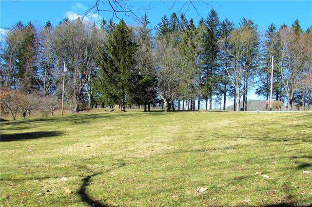 0 Lakeside Drive, Pawling, NY 12564 (MLS #4849252) :: Mark Seiden Real Estate Team