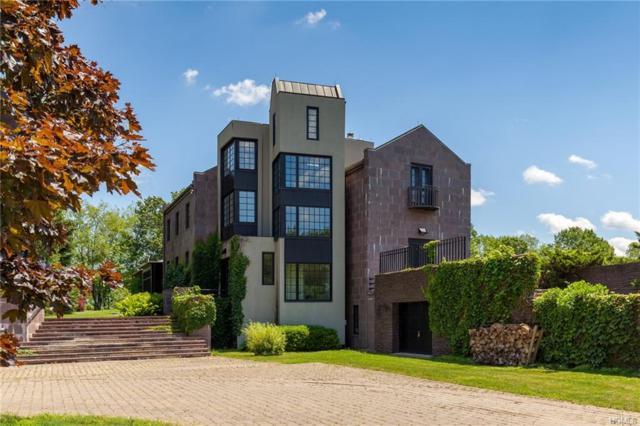35 Killearn Road, Millbrook, NY 12545 (MLS #4849356) :: Mark Seiden Real Estate Team