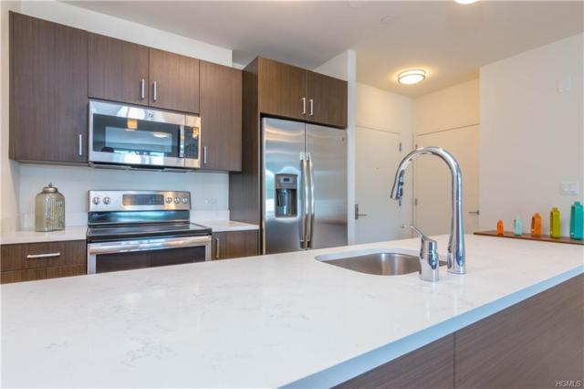 550 Halstead Avenue #209, Harrison, NY 10528 (MLS #4849363) :: Keller Williams Realty Hudson Valley United