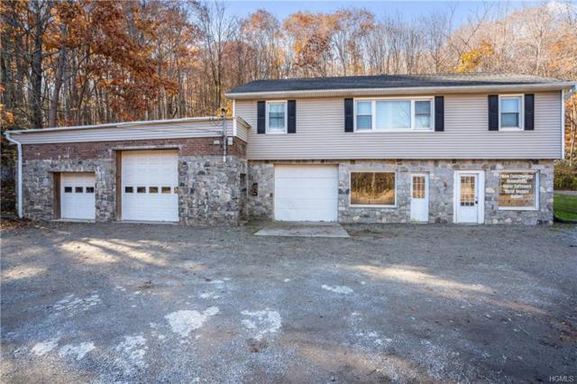 1397 Route 52, Carmel, NY 10512 (MLS #4849375) :: Mark Seiden Real Estate Team