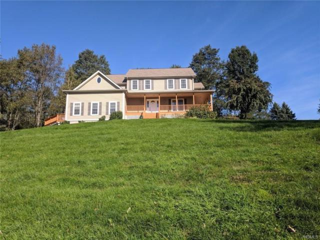 131 Pleasant Ridge Road, Poughquag, NY 12570 (MLS #4849387) :: Mark Seiden Real Estate Team