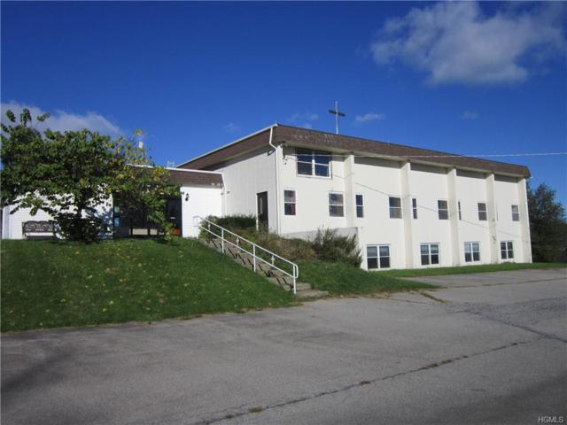 26 Loscerbo Lane, Newburgh, NY 12550 (MLS #4849388) :: William Raveis Baer & McIntosh