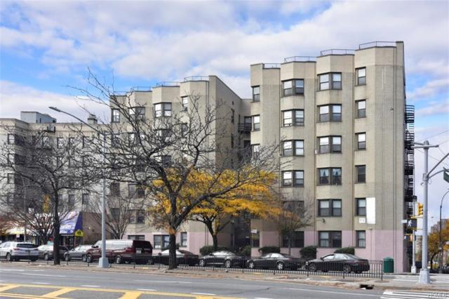 1855 Grand Concourse #24, Bronx, NY 10453 (MLS #4849433) :: Mark Seiden Real Estate Team
