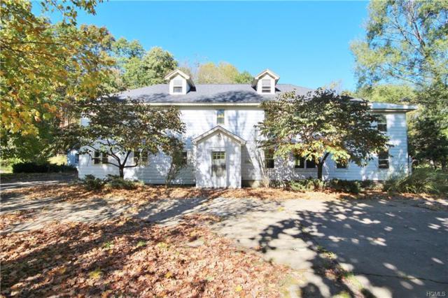54 Ryan Road, Pine Plains, NY 12567 (MLS #4849470) :: Mark Seiden Real Estate Team