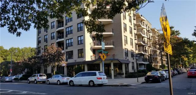 1874 S Pelham Parkway 5C, Bronx, NY 10461 (MLS #4849495) :: William Raveis Legends Realty Group