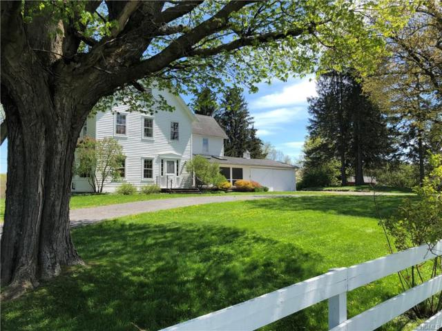 486 Bashford Road, Chatham, NY 12184 (MLS #4849522) :: Shares of New York