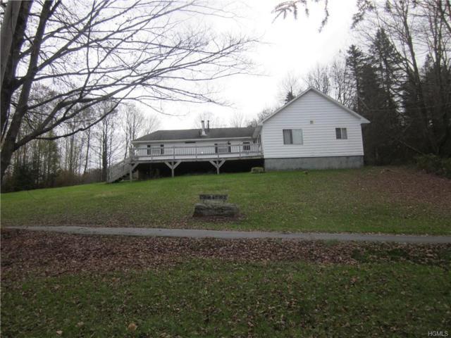 261 Dutch Hill Road, Roscoe, NY 12776 (MLS #4849535) :: Mark Seiden Real Estate Team