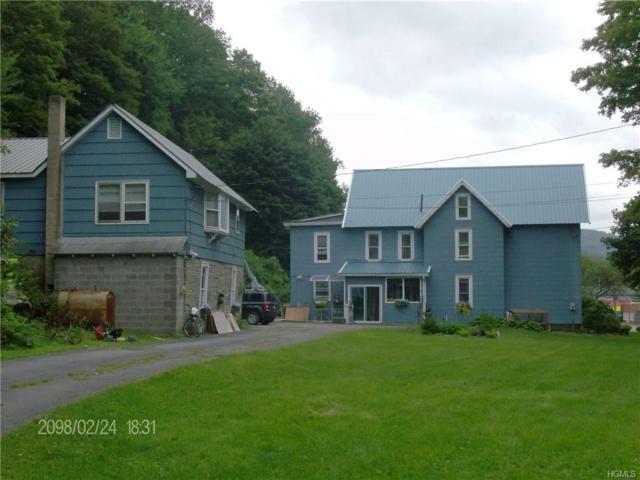 1994 Old Route 17, Roscoe, NY 12776 (MLS #4849593) :: Mark Seiden Real Estate Team