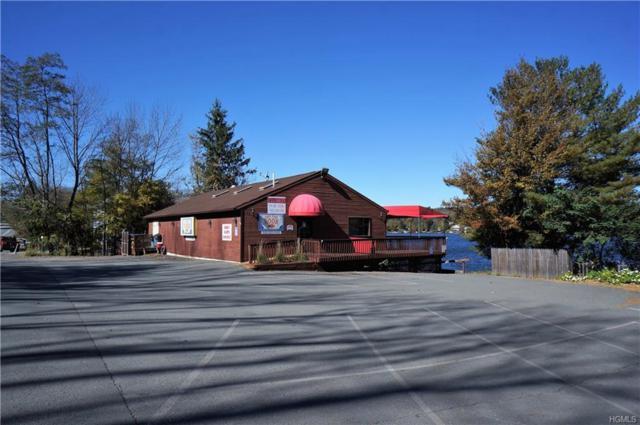 1568 Nys Rte 17B, White Lake, NY 12786 (MLS #4849782) :: Mark Boyland Real Estate Team
