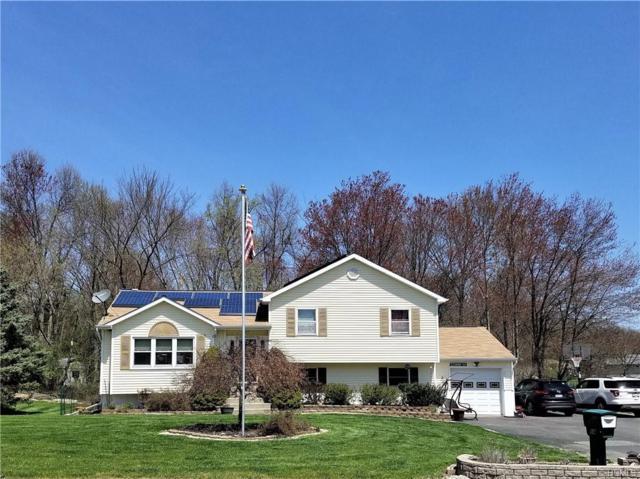 14 Canterbury Circle, Washingtonville, NY 10992 (MLS #4849799) :: William Raveis Baer & McIntosh
