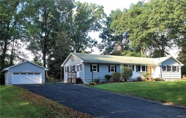 10 Cramer Road, Rhinebeck, NY 12572 (MLS #4849807) :: Mark Seiden Real Estate Team