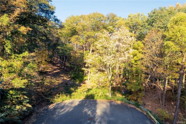 Lookout Stable Road, Tuxedo Park, NY 10987 (MLS #4849859) :: Shares of New York