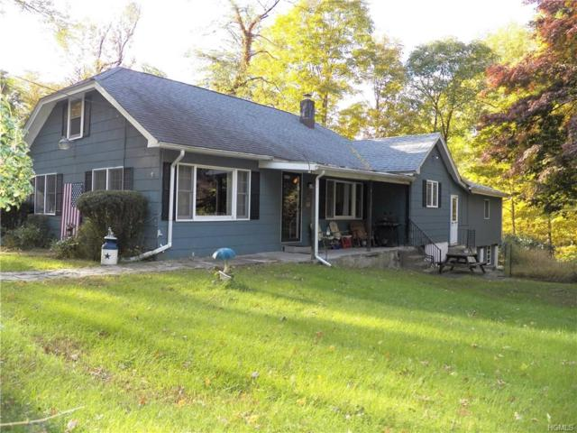 48 Long Hill Road, Highland Mills, NY 10930 (MLS #4849992) :: William Raveis Legends Realty Group