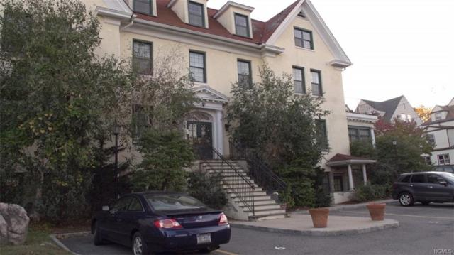 325 Highland Avenue #202, Mount Vernon, NY 10553 (MLS #4850047) :: Mark Boyland Real Estate Team