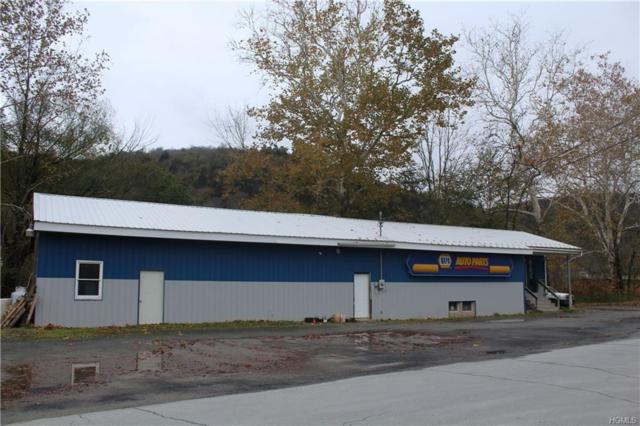 28 Cottage Street, Roscoe, NY 12776 (MLS #4850103) :: Mark Seiden Real Estate Team