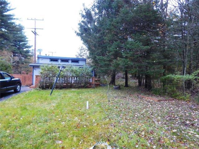 83 Mattison Road, Bethel, NY 12720 (MLS #4850184) :: Stevens Realty Group