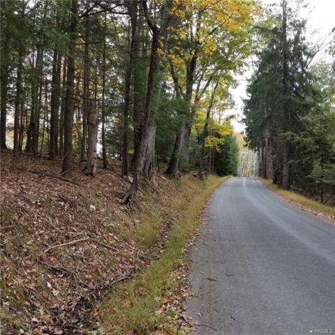 Mt Meenagha Road, Ellenville, NY 12428 (MLS #4850250) :: Mark Seiden Real Estate Team