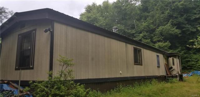 99 Hoffman Road #40, Narrowsburg, NY 12764 (MLS #4850278) :: Mark Seiden Real Estate Team