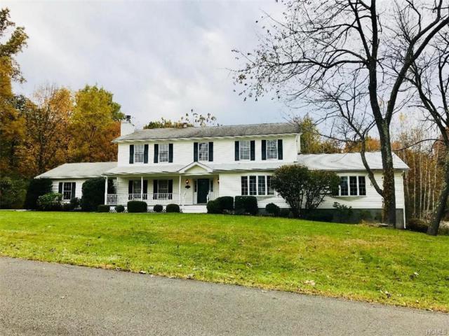 24 Paula Drive, Milton, NY 12547 (MLS #4850339) :: Mark Seiden Real Estate Team