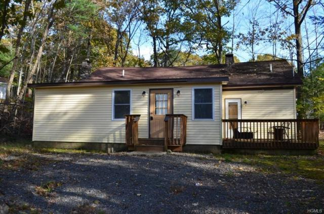 14 Mcclay Road, Wurtsboro, NY 12790 (MLS #4850341) :: Mark Seiden Real Estate Team