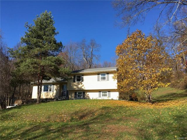 207 Diddell Road, Poughkeepsie, NY 12603 (MLS #4850378) :: Mark Seiden Real Estate Team