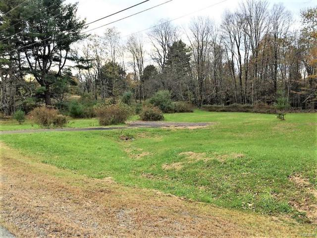 3969 Nys Hwy 55, Bethel, NY 12720 (MLS #4850427) :: Mark Boyland Real Estate Team