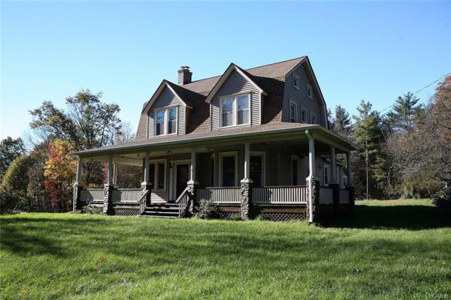 8254 State Route 52, Narrowsburg, NY 12764 (MLS #4850527) :: William Raveis Legends Realty Group