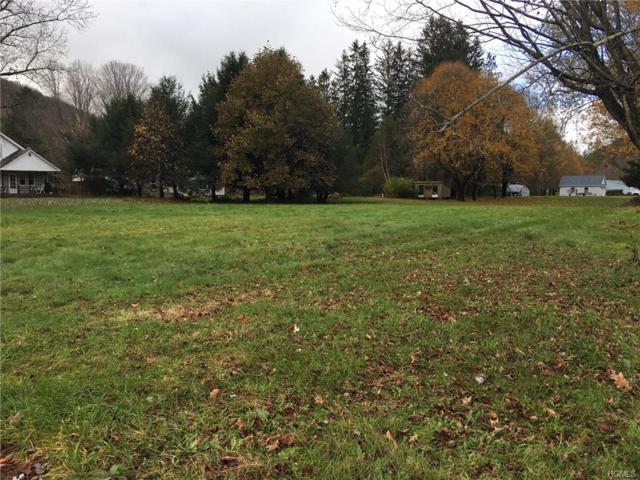 Johnston Road, Livingston Manor, NY 12758 (MLS #4850616) :: Mark Seiden Real Estate Team