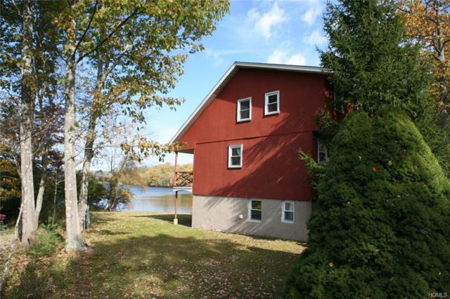 6795 State Route 52, Lake Huntington, NY 12752 (MLS #4850631) :: Stevens Realty Group