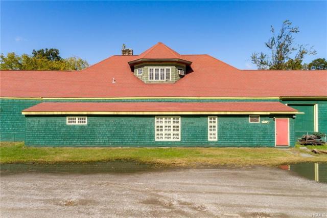 206 Canal Street, Ellenville, NY 12428 (MLS #4850645) :: Mark Seiden Real Estate Team