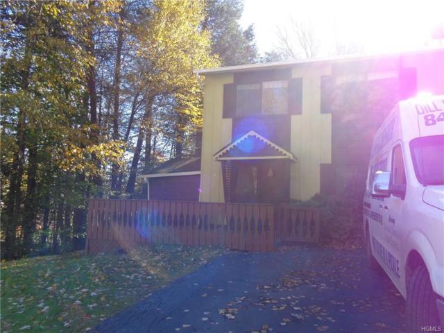 24 Robert Road, Kiamesha Lake, NY 12751 (MLS #4850770) :: William Raveis Legends Realty Group