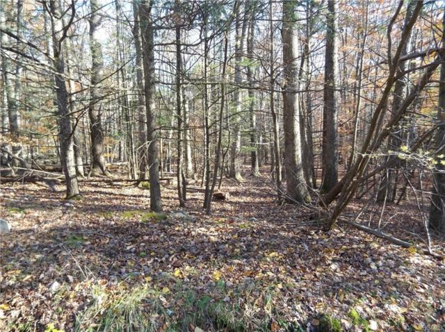 Wildwood Circle, Wurtsboro, NY 12790 (MLS #4850835) :: Mark Seiden Real Estate Team