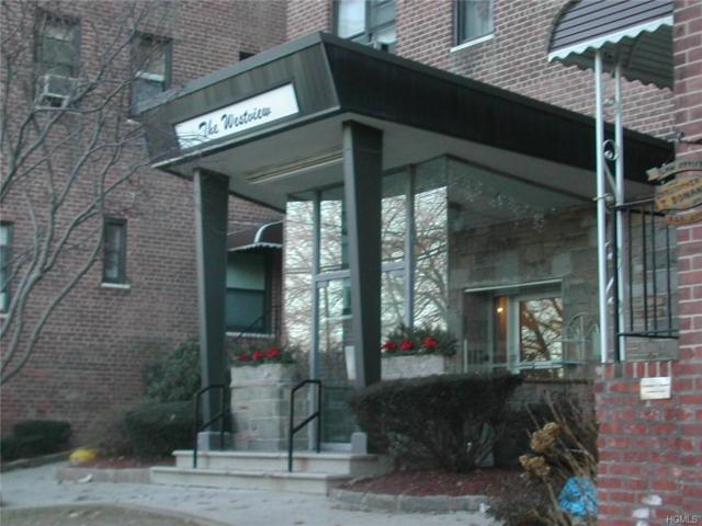 11 Bronx River Road 1L, Yonkers, NY 10704 (MLS #4850916) :: William Raveis Baer & McIntosh
