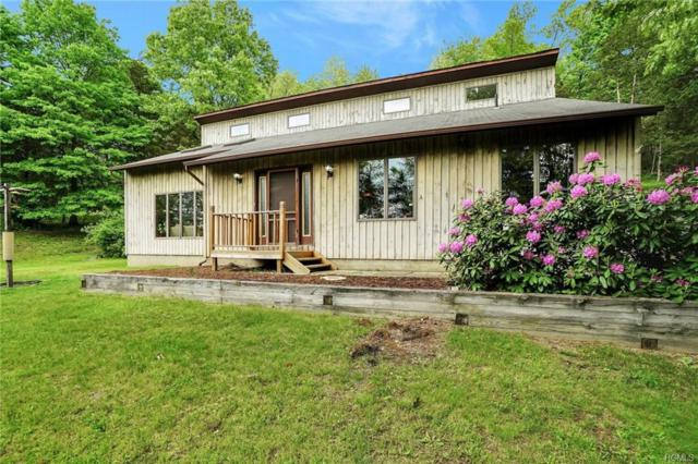 10 Turtle, Monroe, NY 10950 (MLS #4850924) :: William Raveis Legends Realty Group