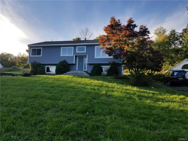 5 Spruce Drive, Highland Mills, NY 10930 (MLS #4850967) :: Mark Seiden Real Estate Team